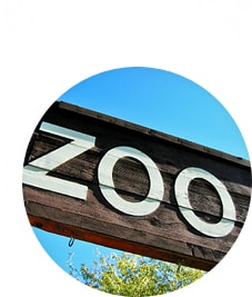 What qualifications for a Zoology?